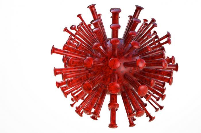 ヘルペスウイルスの画像。