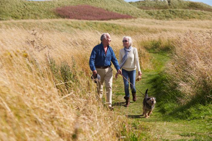 Un couple plus âgé promène son chien à la campagne
