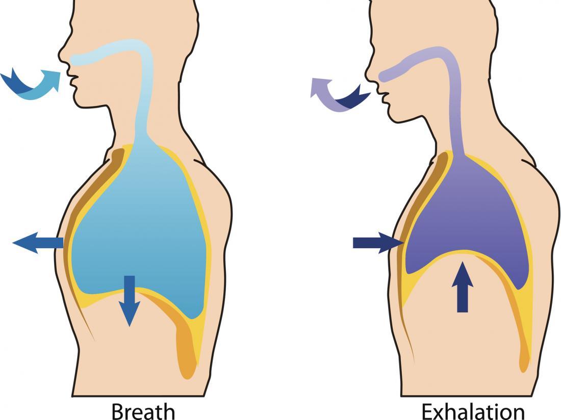 schemat oddychania i wydechu