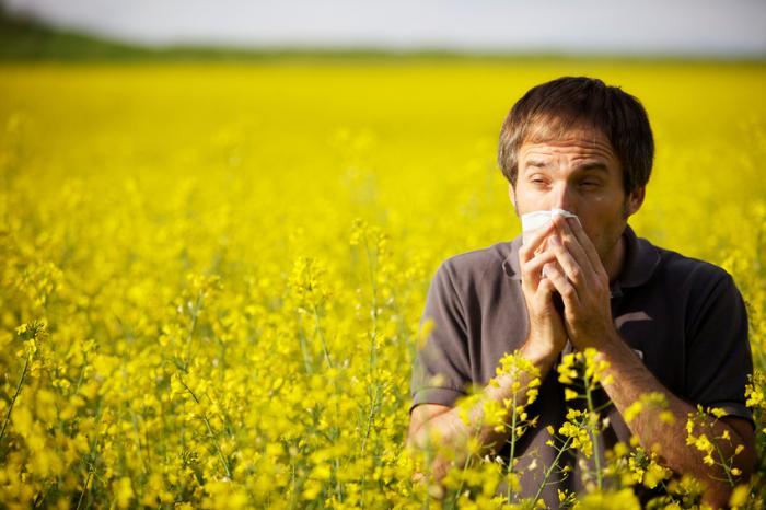 [allergia ai pollini]