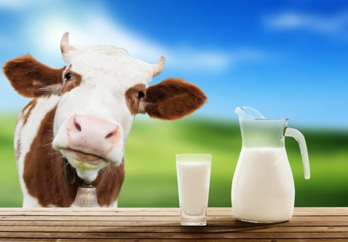 Ein Krug und ein Glas Milch.