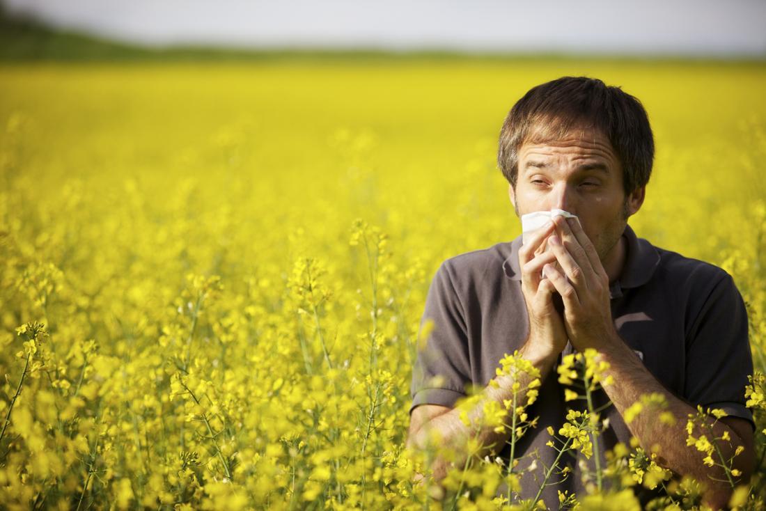 Човек в полето на жълти цветя, кашляйки и разпенващ носа.