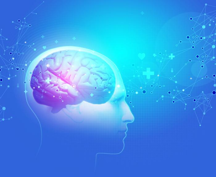 [Hypothalamus
