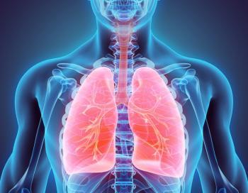 Une image 3d des poumons