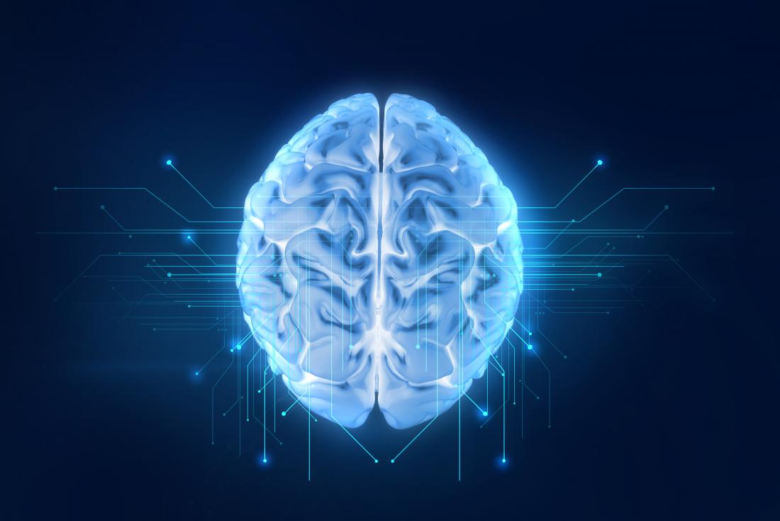Diagrama 3d do cérebro