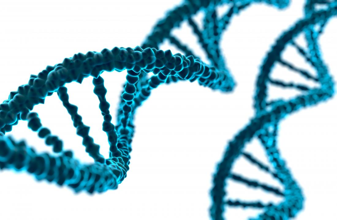 Modèle de brins d'ADN illustrant la génétique.