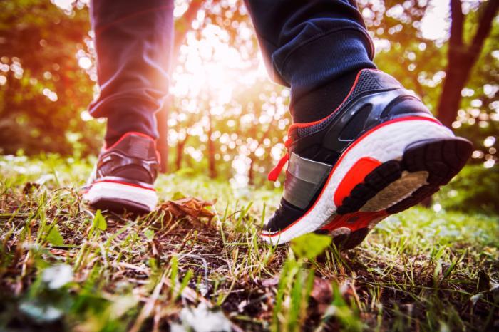 pessoa caminhando em uma floresta