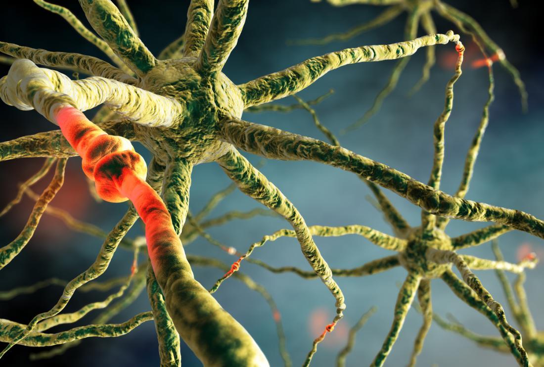 Мозъчен синапс на невроните