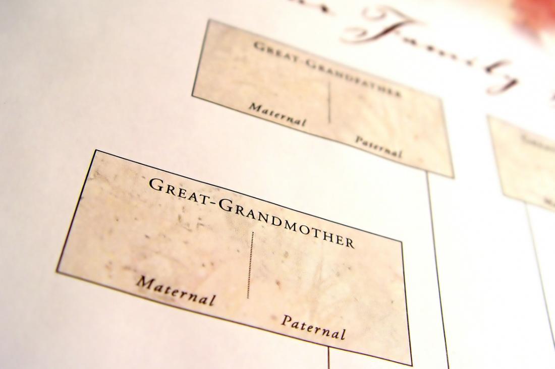 Stammbaumdiagramm, mit Kästen für große Großeltern und ihre Abstammung.