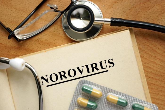 Norovirus écrit dans le livre aux côtés des pilules et du stéthoscope.