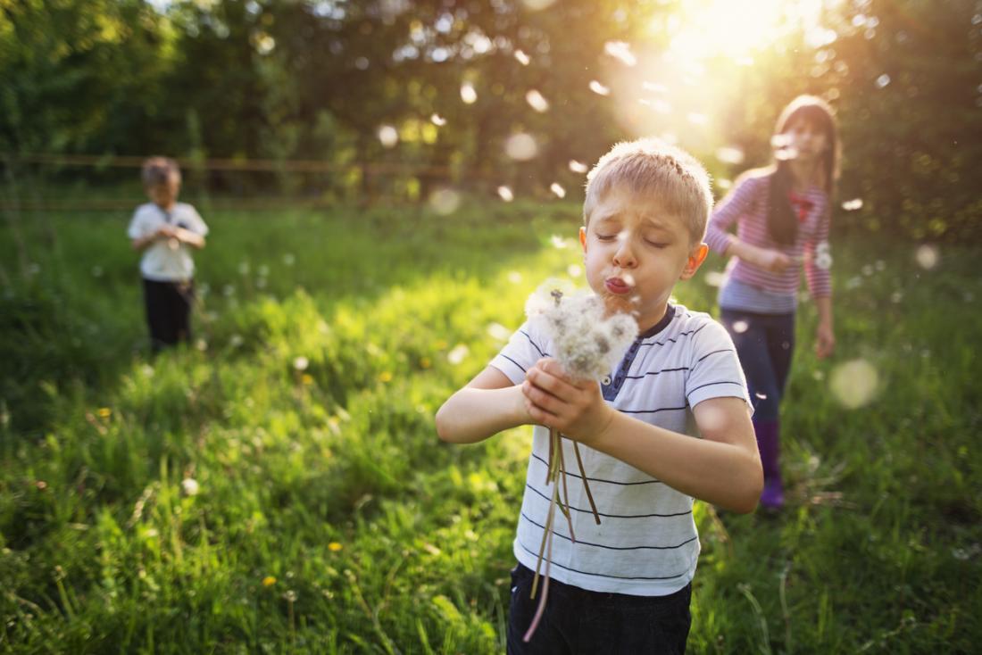 bambini in un campo con polline