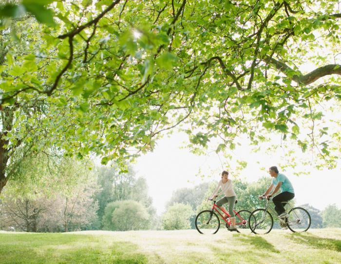 uomo e donna vanno in bici attraverso un bosco