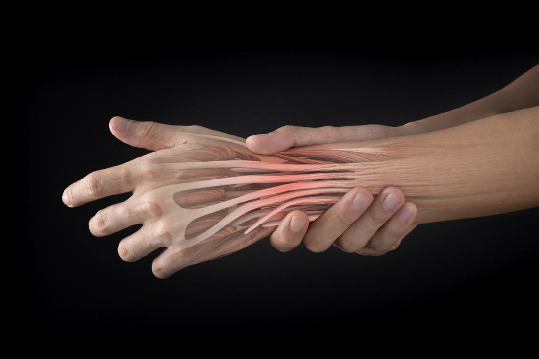 tendini estensori della mano