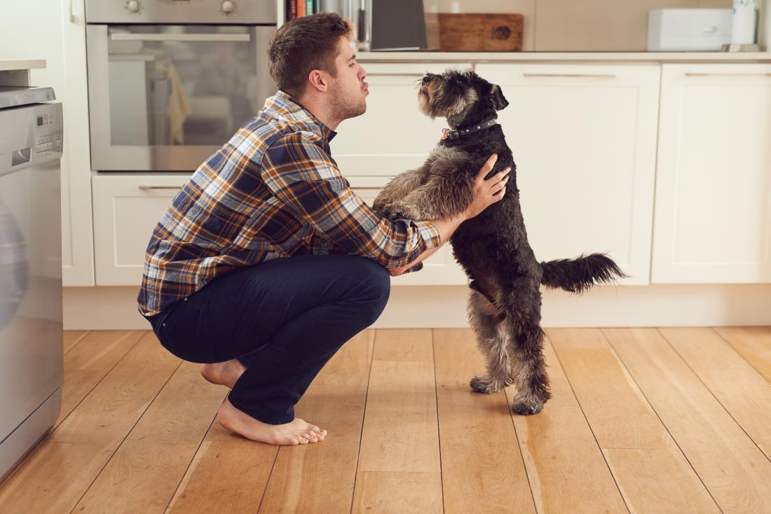 Mann im Gespräch mit seinem Hund