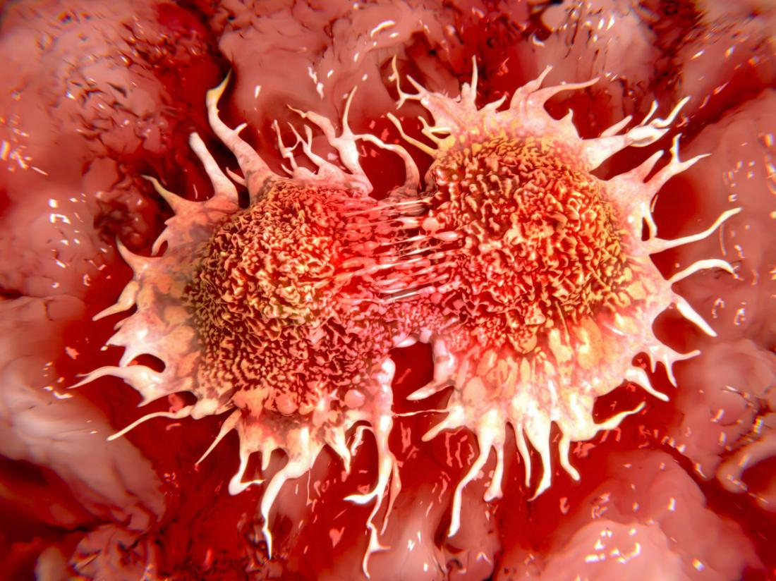 cellule tumorali che si dividono