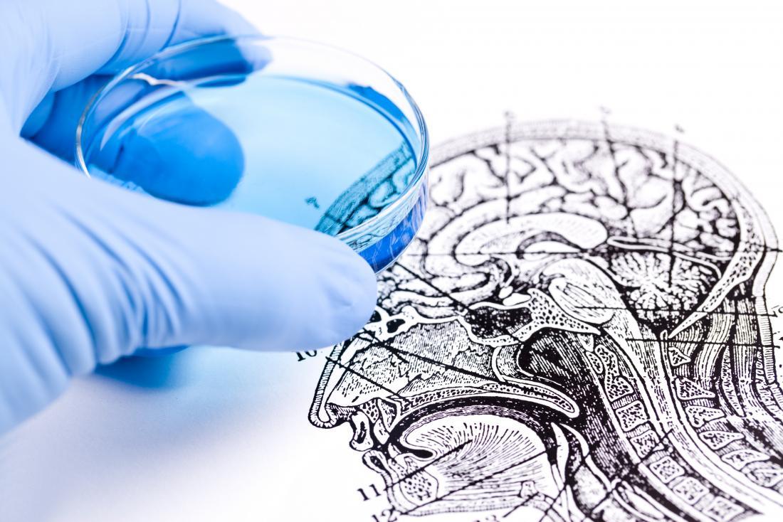 pesquisa cerebral