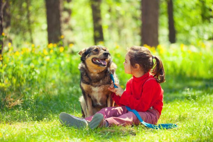 [cane e ragazza]