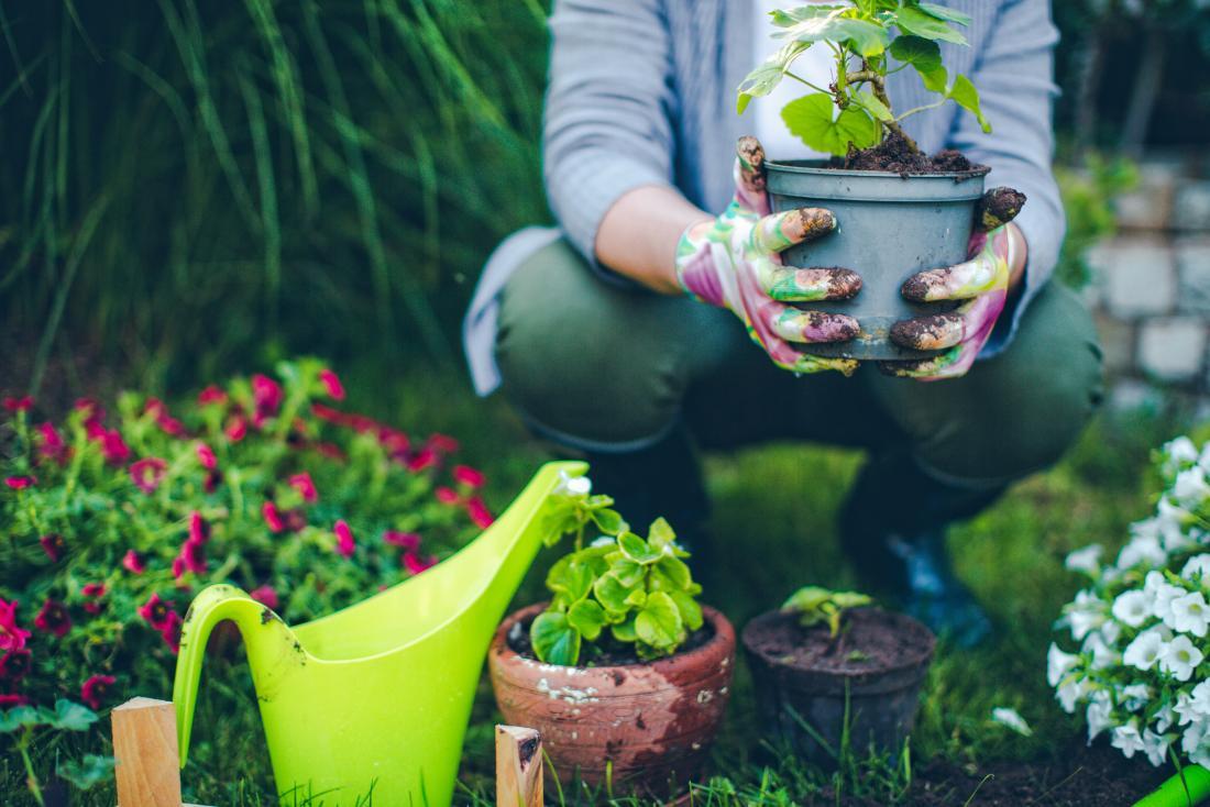 kobieta ogrodnicza