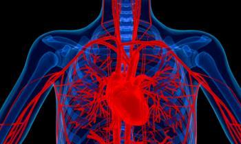 [心臓と動脈の図]