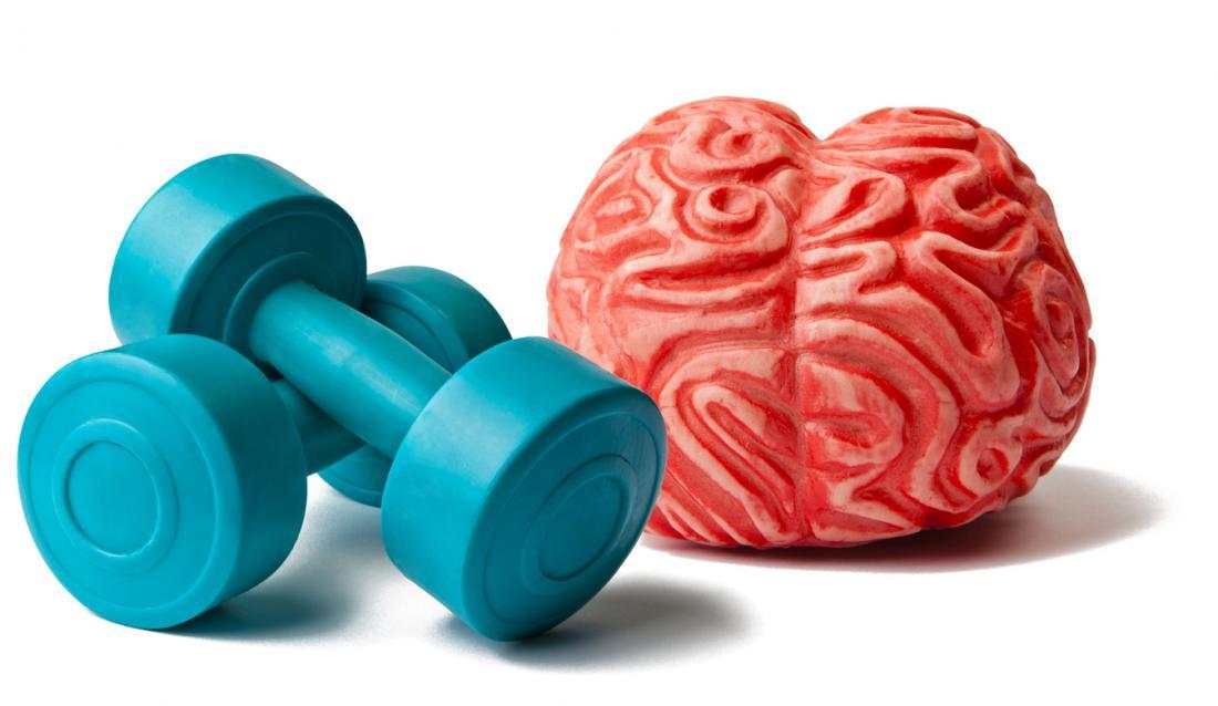cervello e pesi