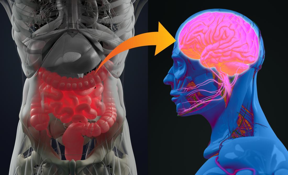 Eixo do cérebro do intestino