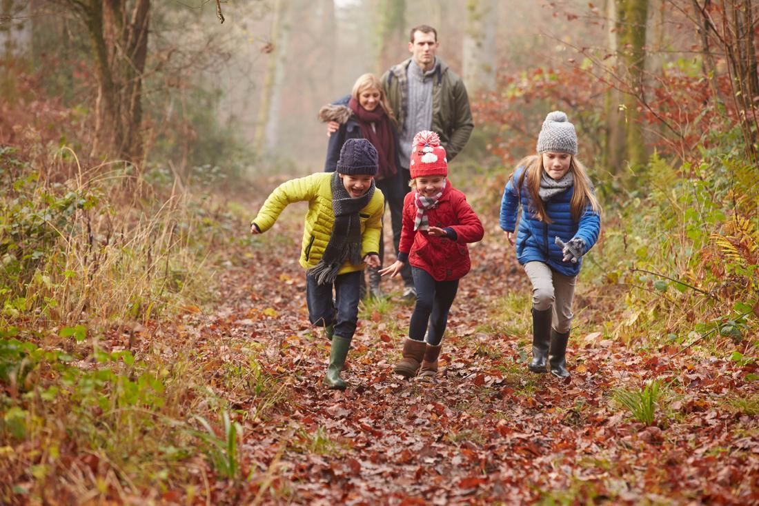 Famille marchant dans les bois