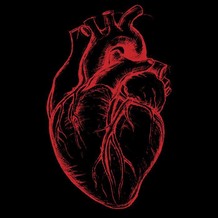 [Schwarz-rote Herz-Illustration]
