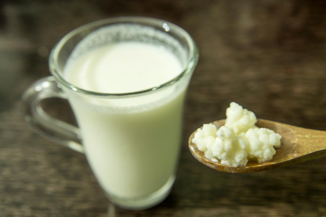 leite de kefir e grãos de kefir