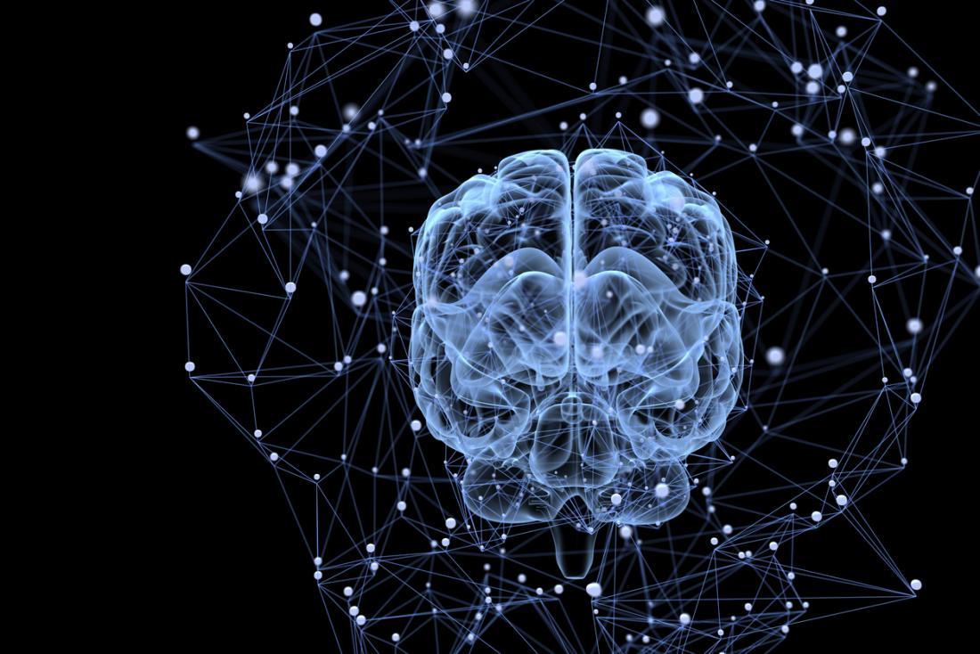 脳の活動とつながり