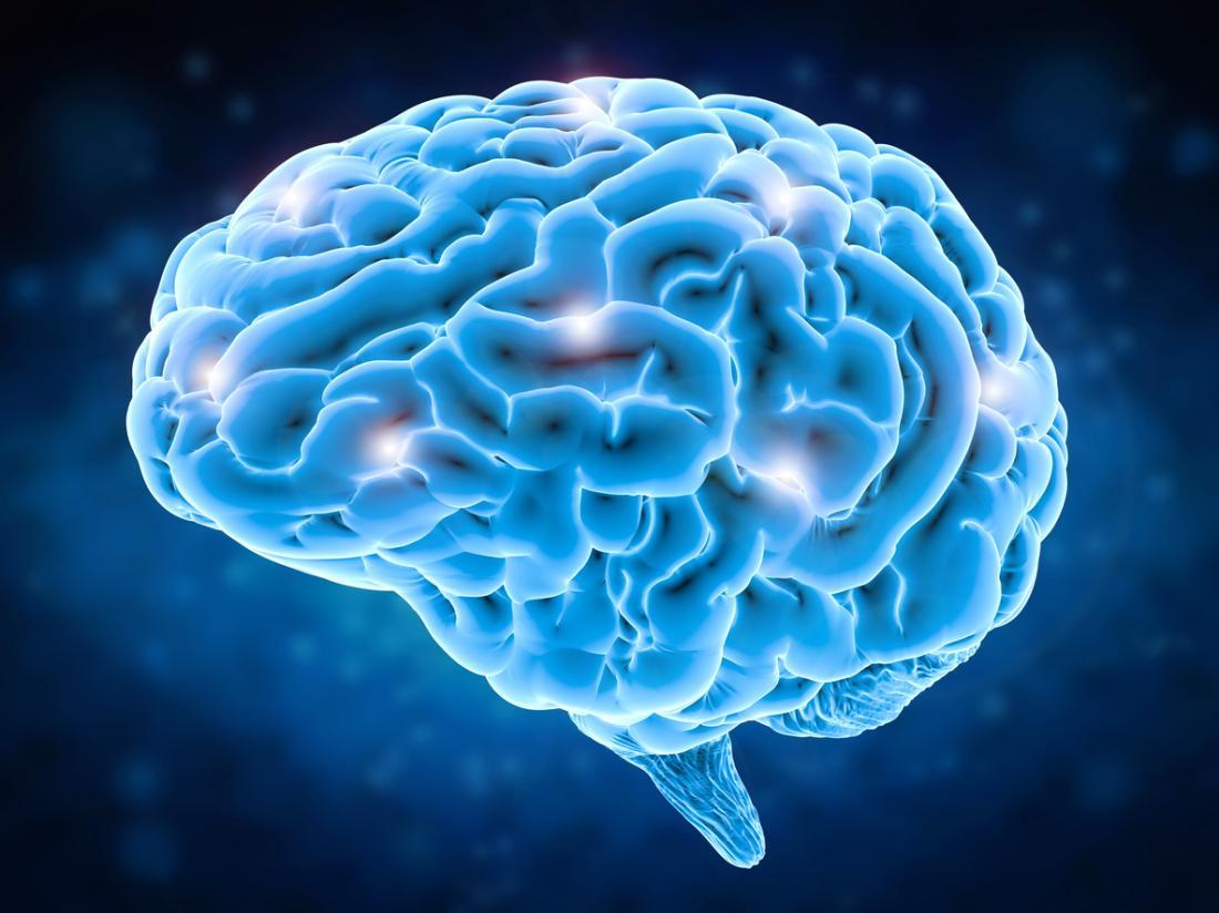 uma ilustração do cérebro humano e neurônios