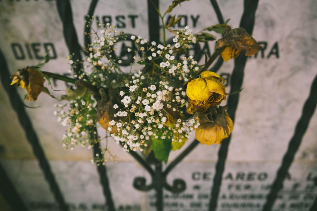 bando de rosas secas na frente de um túmulo
