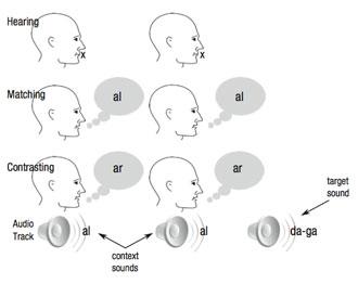 Diagramm des Experiments