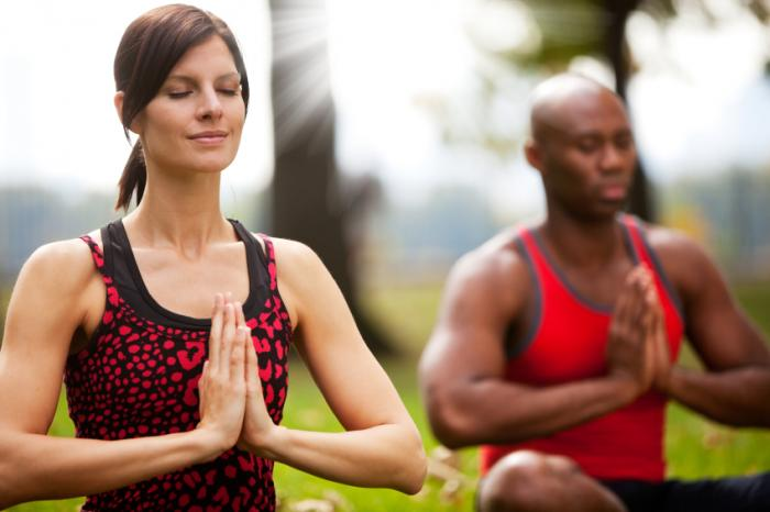 [Due persone che fanno yoga nel parco]